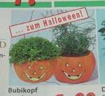 Halloween im Supermarkt